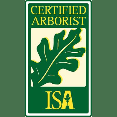 isa certified arborist, spring tree care