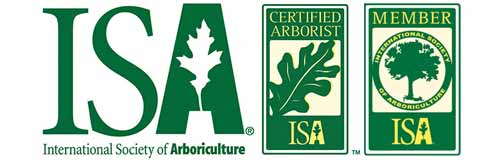 HIRE A CERTIFIED TREE CARE EXPERT